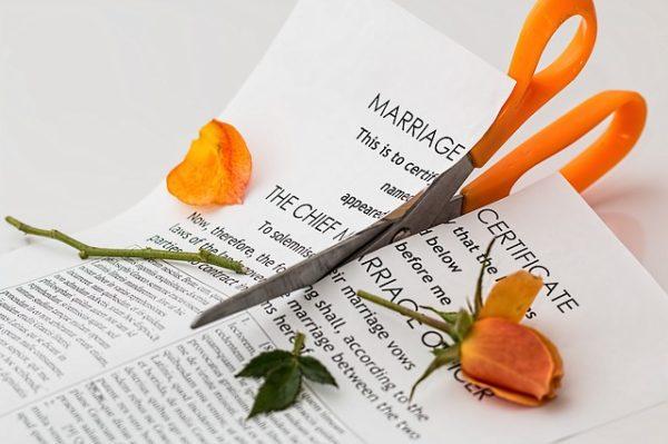 ножницы цветок роза лист бумаги