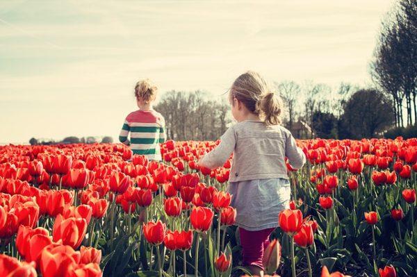 мальчик и девочка в поле тюльпанов