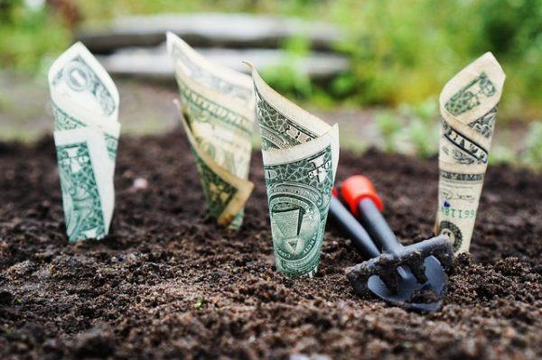 деньги доллары лопатка, грабли земля