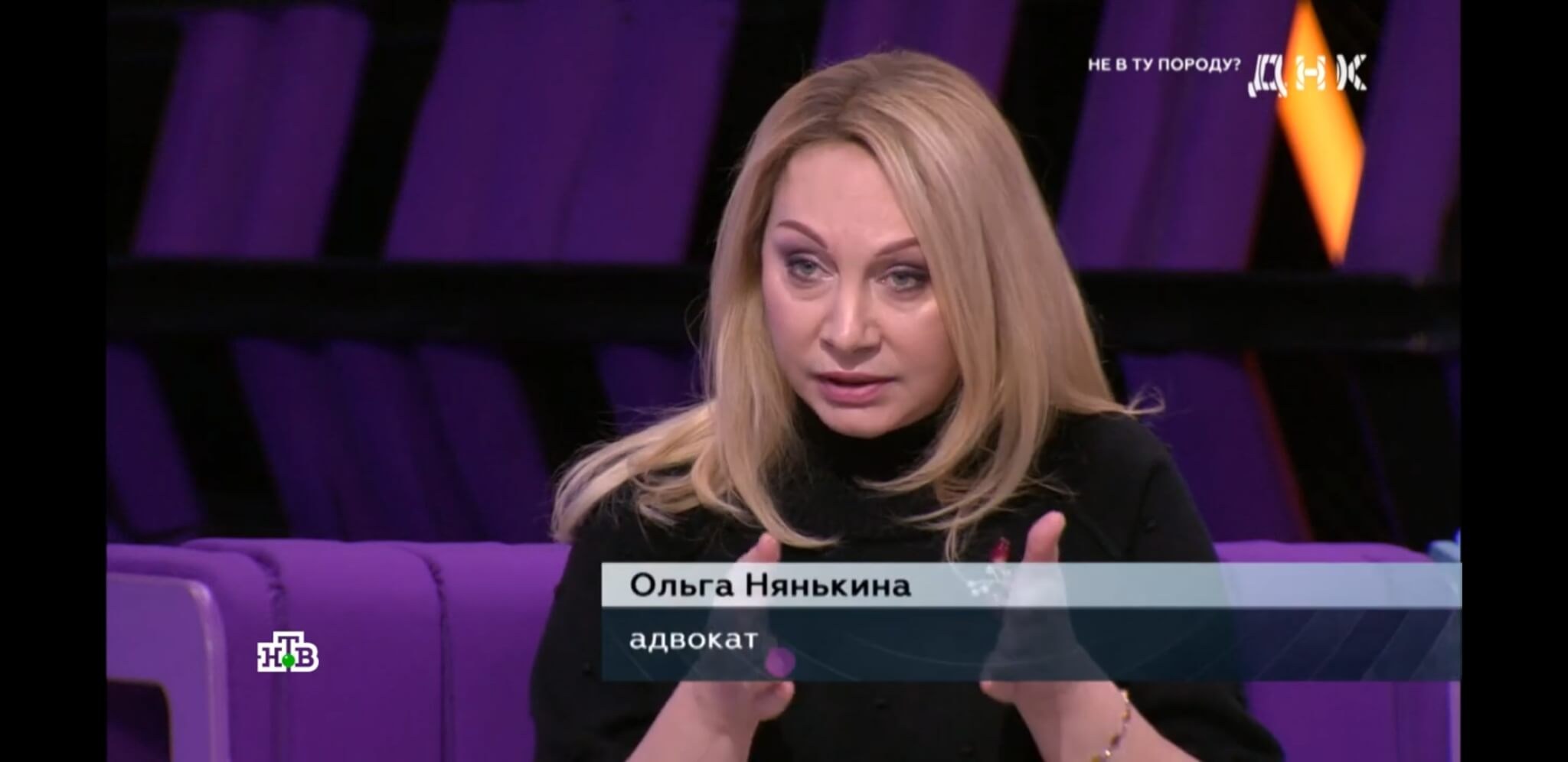 Квартиры Андрея Караулова арест